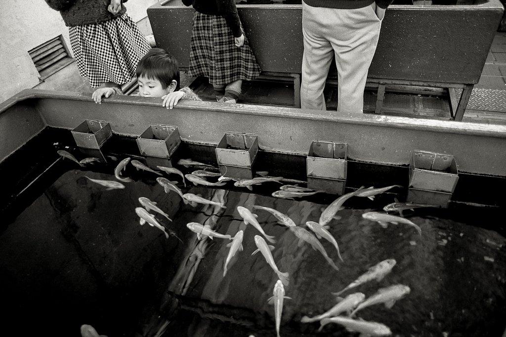 Japan : a photographic haïku #06